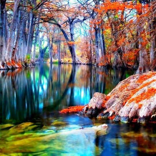 pinturas e  natureza